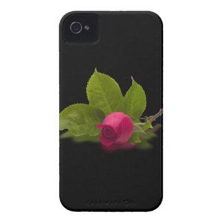 El rojo de Alec rojo del capullo de rosa iPhone 4 Protectores