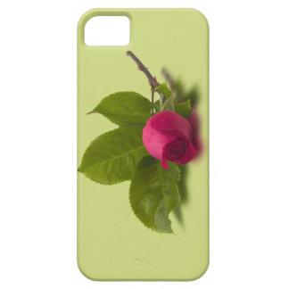El rojo de Alec rojo del capullo de rosa iPhone 5 Carcasa