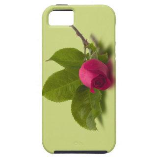 El rojo de Alec rojo del capullo de rosa iPhone 5 Funda
