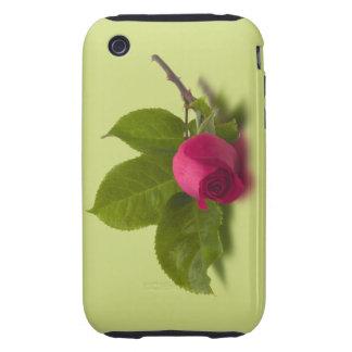 El rojo de Alec rojo del capullo de rosa Tough iPhone 3 Cobertura