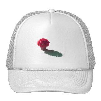 El rojo florece el cubo y la sombra blancos gorra