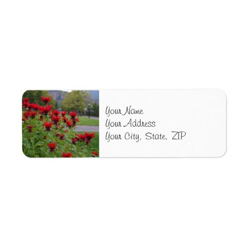 El rojo florece la etiqueta de dirección