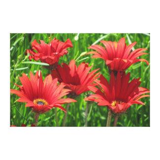 El rojo florece la hierba verde impresión en lienzo
