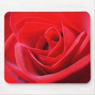 El rojo florece los regalos de la decoración del r tapete de ratones