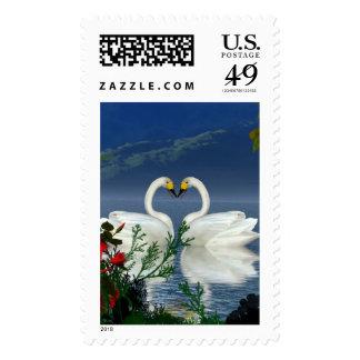 El rojo hermoso de los cisnes del corazón florece sellos