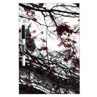 El rojo mágico florece el árbol pizarras blancas de calidad