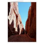 El rojo oscila paisaje al sudoeste del desierto de felicitacion