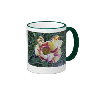 El rojo remolina los tulipanes amarillos tazas de café