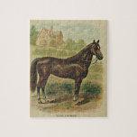 El rompecabezas del caballo