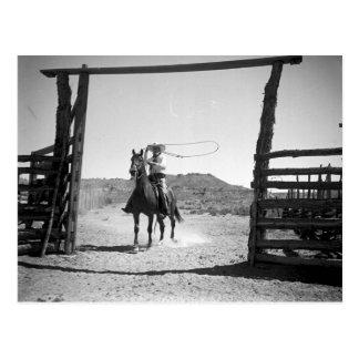 El roping del vaquero postales