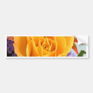 el rosa abre la belleza para el amor etiqueta de parachoque