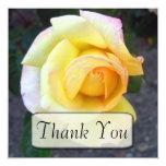 """El rosa amarillo de florecimiento le agradece las invitación 5.25"""" x 5.25"""""""
