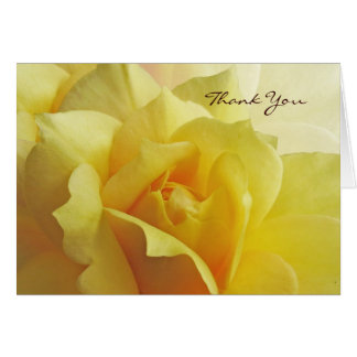 El rosa amarillo le agradece tarjeta de nota