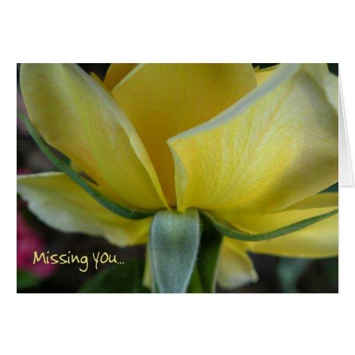 El rosa amarillo que le falta carda tarjeta de felicitación