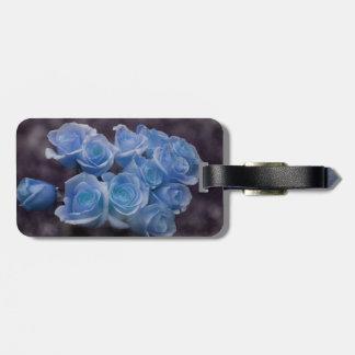 El rosa azul colorized el fondo manchado ramo etiquetas para maletas