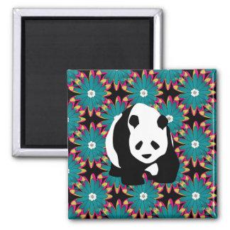 El rosa azul lindo del oso de panda florece el est iman para frigorífico