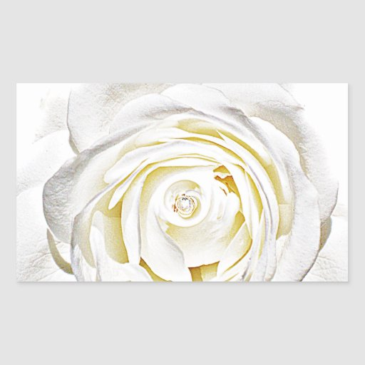 El rosa blanco de Love_ Rectangular Pegatina
