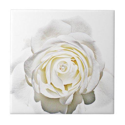 El rosa blanco de Love_ Tejas Cerámicas