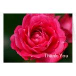El rosa de las rosas fuertes le agradece tarjetas