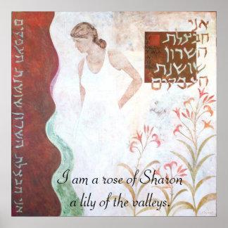 El rosa de Sharon Poster