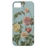 El rosa de té del vintage y se ruboriza los rosas iPhone 5 funda