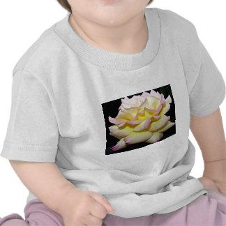 "El rosa de té híbrido ""paz subió"" las flores camiseta"