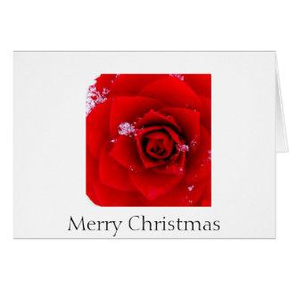 El rosa del notecard del navidad de Sharon Tarjeta Pequeña