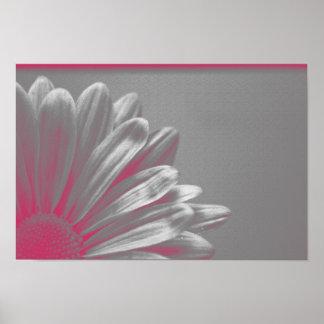 El rosa destacó la flor póster