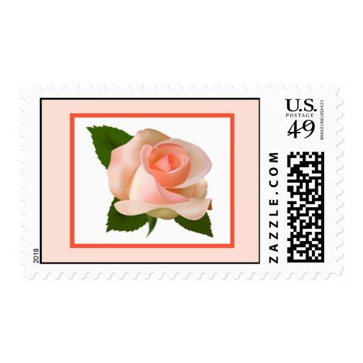 El rosa/el melocotón de 20 sellos subió con flujo