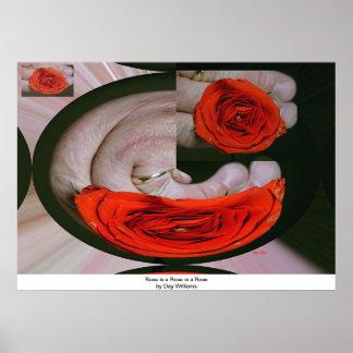 El rosa es un rosa es un color de rosa impresiones