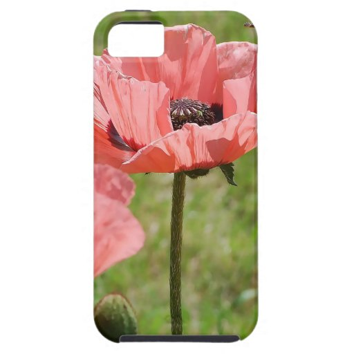 El rosa florece 6 frecuencia intermedia iPhone 5 funda