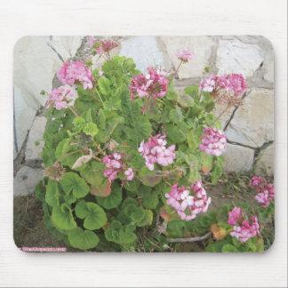el rosa florece el ramo alfombrilla de ratones