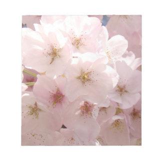 El rosa florece las flores del árbol de la primave bloc de notas