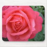El rosa florece los regalos de la decoración del r alfombrilla de ratón
