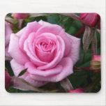 El rosa florece los regalos de la decoración del r tapetes de ratón