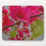 El rosa florece Mousepad Alfombrilla De Raton