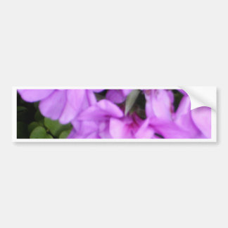 El rosa florece Upclose Pegatina De Parachoque
