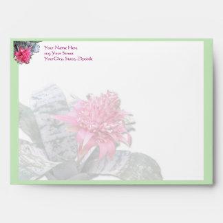 El rosa floreció Bromeliad
