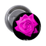 El rosa oscuro colorized color de rosa en una part pin