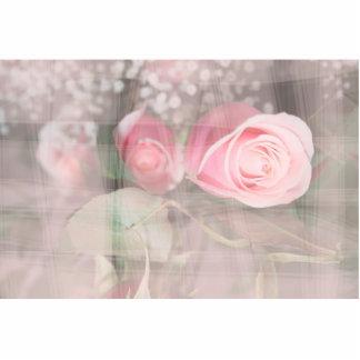el rosa pintado sobre los brotes grunged rosa de l esculturas fotograficas