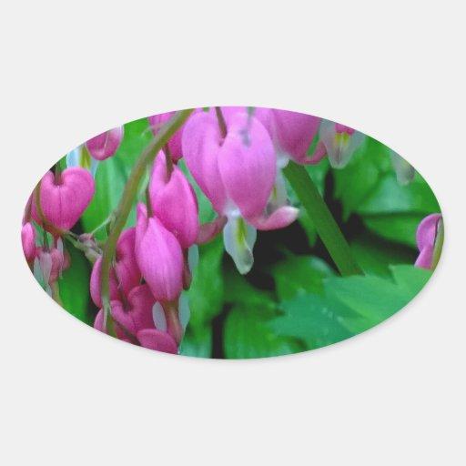 El rosa que cuelga calienta en el jardín calcomanía ovalada