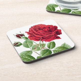 El rosa rojo botánico florece el práctico de costa apoyavasos
