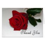 El rosa rojo le agradece felicitacion