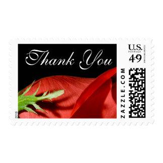 El rosa rojo le agradece franqueo del acontecimien
