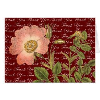 El rosa rosado antiguo hermoso le agradece las tarjeta pequeña