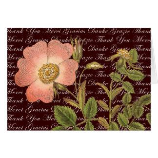 El rosa rosado del vintage le agradece en muchas tarjeta pequeña