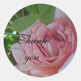 El rosa rosado le agradece sellar pegatina redonda