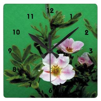 el rosa salvaje subió las flores en el verde eleg