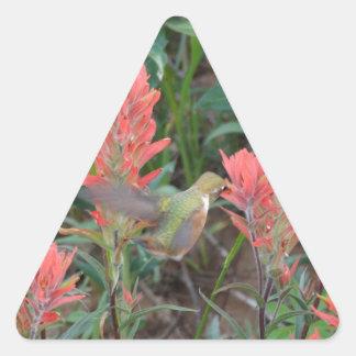 El rubí en rojo florece el colibrí pegatina triangular