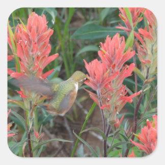El rubí en rojo florece el colibrí pegatina cuadrada
